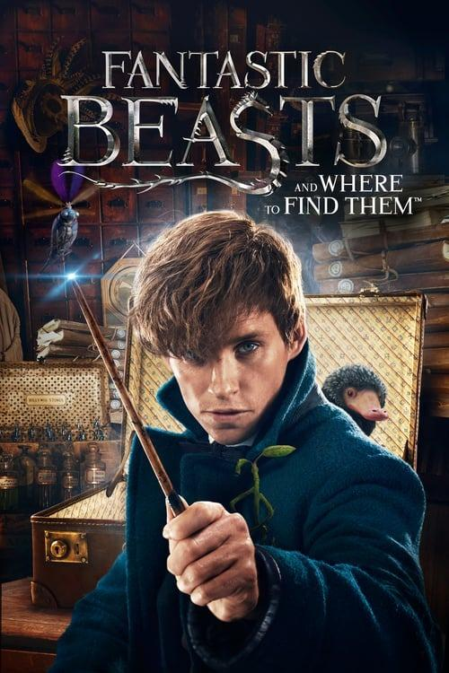 Selling: Fantastic Beasts and Where to Find Them Movies Anywhere 4K
