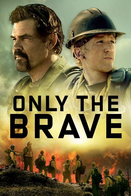 Trading: Only the Brave